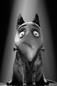 Sparky from Frankenweenie!