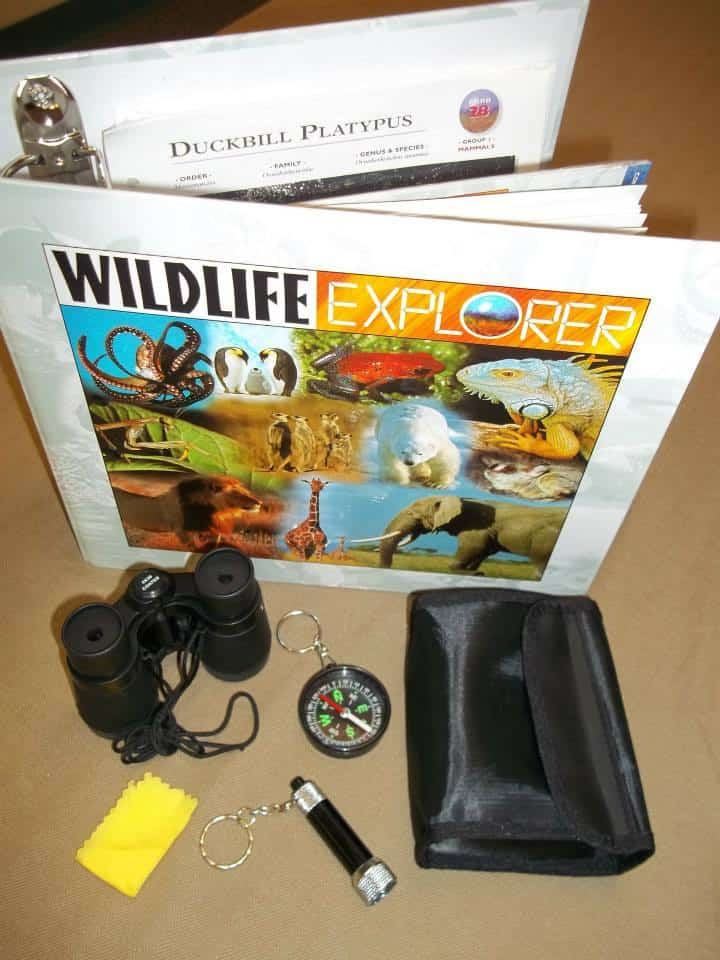 wildlife explorer 1