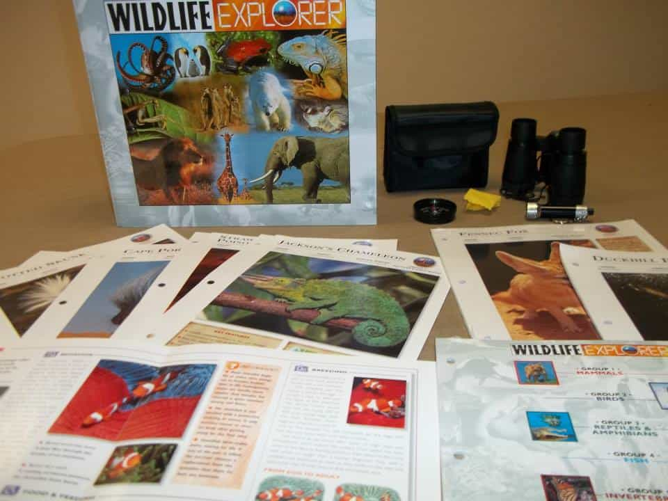 wildlife explorer 2