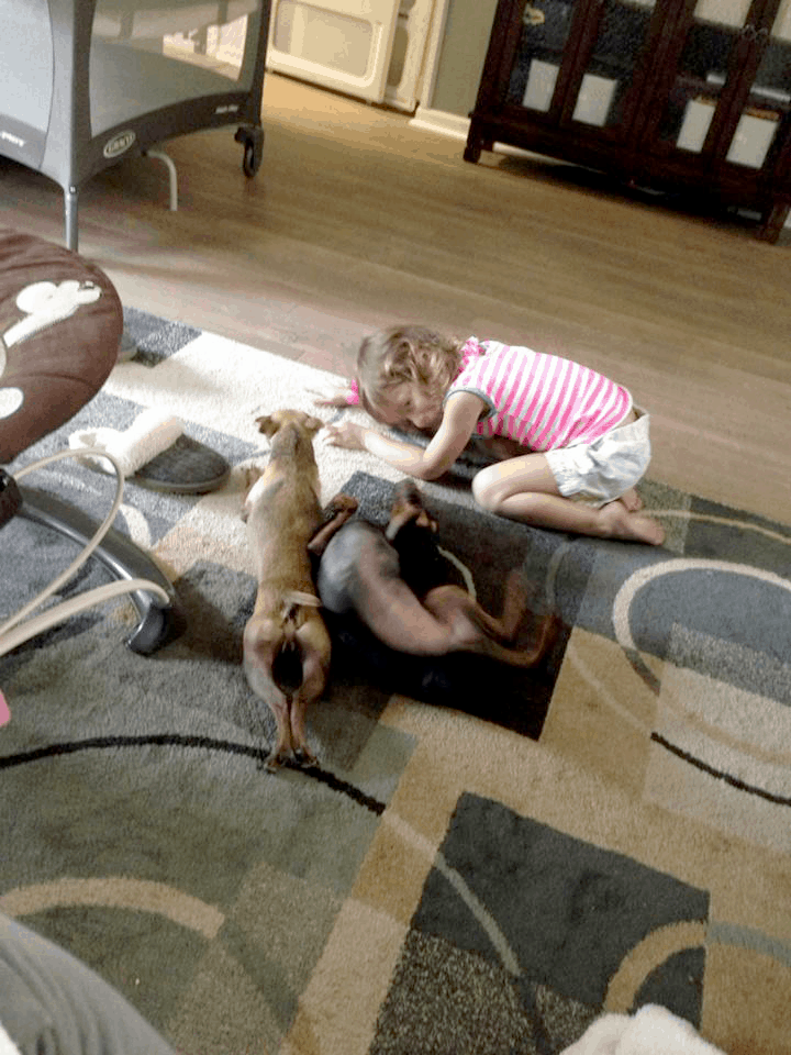 The family's new favorite place to roll around and play!