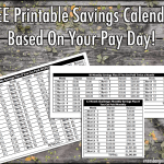 52 Weeks Savings Challenge: Based on when you get paid!