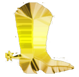 gold-boot