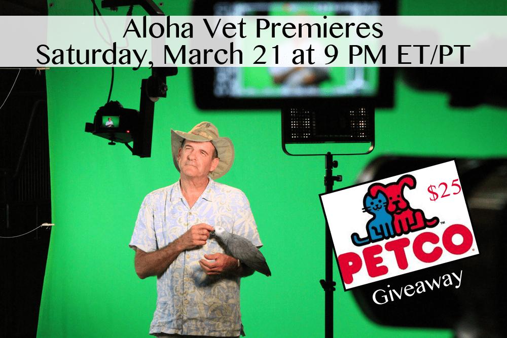 Aloha Vet Premieres DrScottSims_Generic_05_AlohaVet