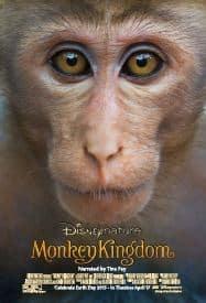 1427405884_monkey1