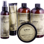 Groupon Wen Sweet Almond Mint Cleansing and Styling Kit - As Seen on TV