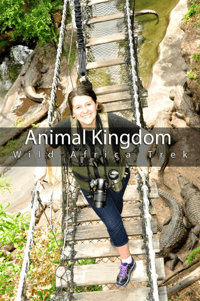 Animal Kingdom Wild Africa Trek