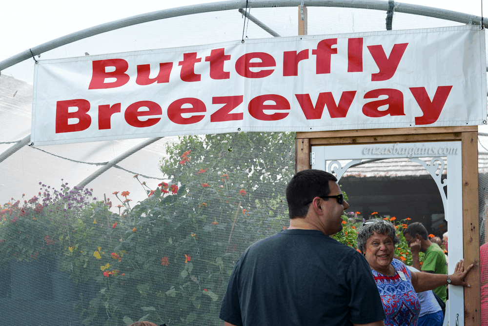 Butterfly Breezeway - Powell Gardens Butterfly Festival - Kansas City