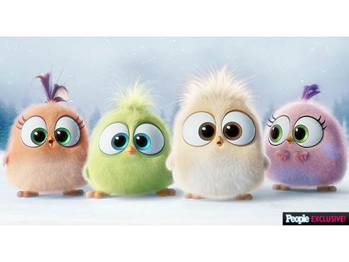 The Angry Birds Hatchings from the Movie - Season's Greetings!