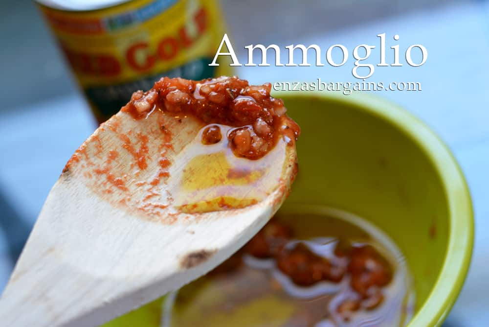 Ammoglio Garlic Sauce Recipe created with Red Gold Tomatoes