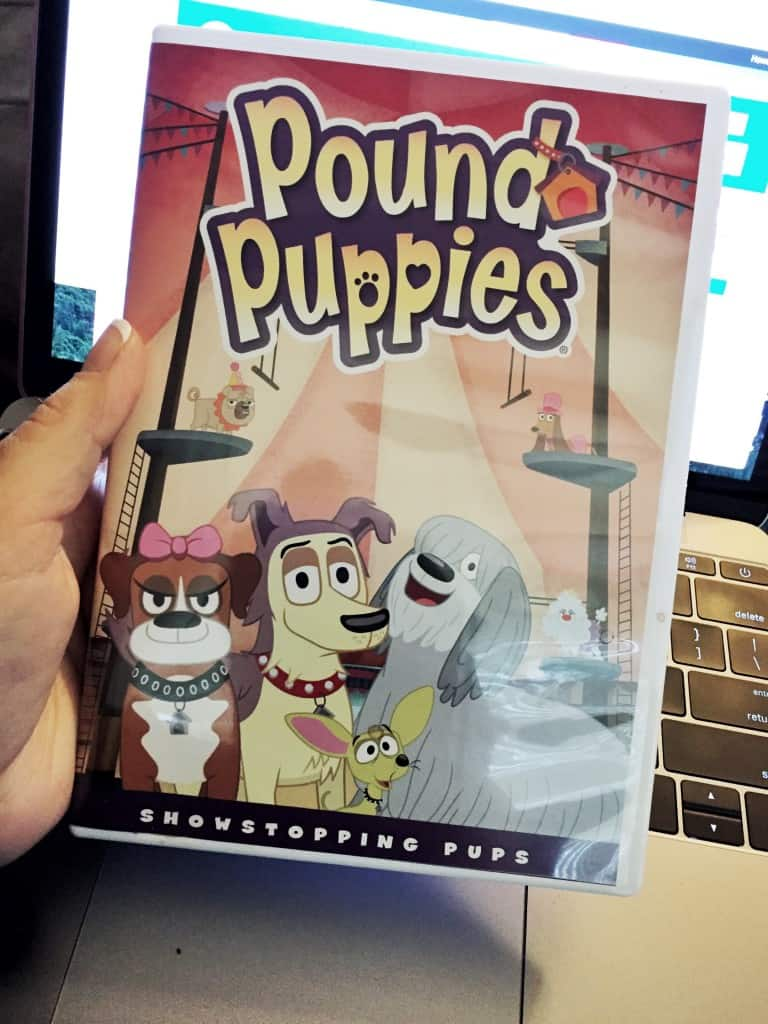 Pound Puppies - Showstopping Pups