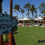 I don't always do yoga, but when I do it is in HAWAII – Angry Birds Movie
