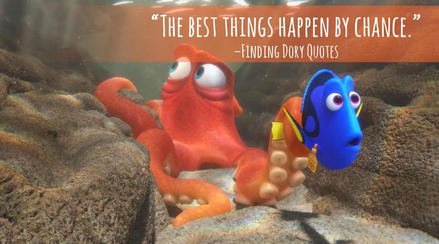Dory Quotes Finding Dory Quotes  Entire List Of The Best Movie Lines In The