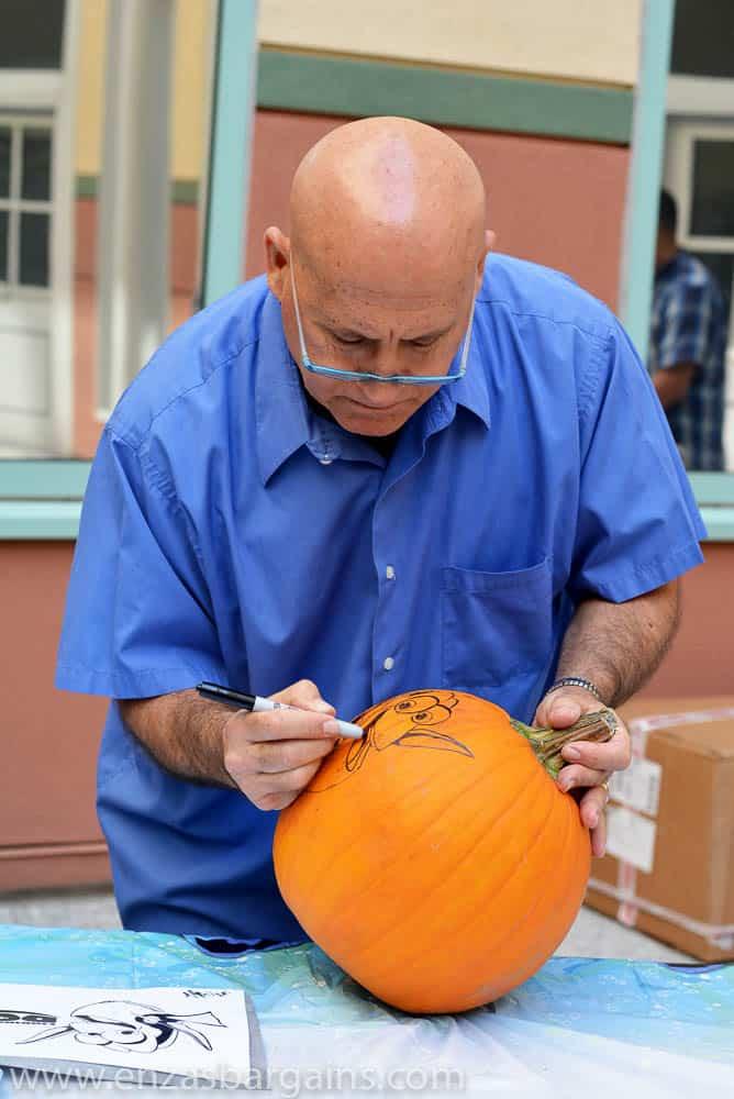 This photo belongs to www.enzasbargains.com