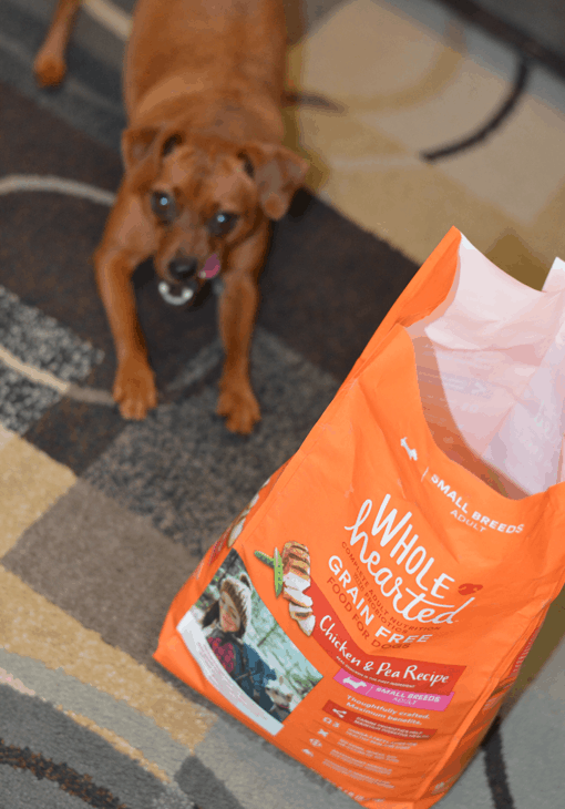 How to choose a dog food for your 4-legged kids! - Wholehearted Dog Food!