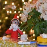 Elf on the Shelf Family Dollar Ideas