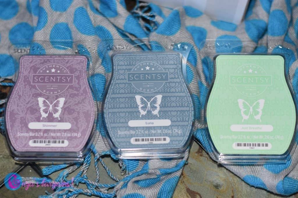 Scentsy Mother's Day Warmer