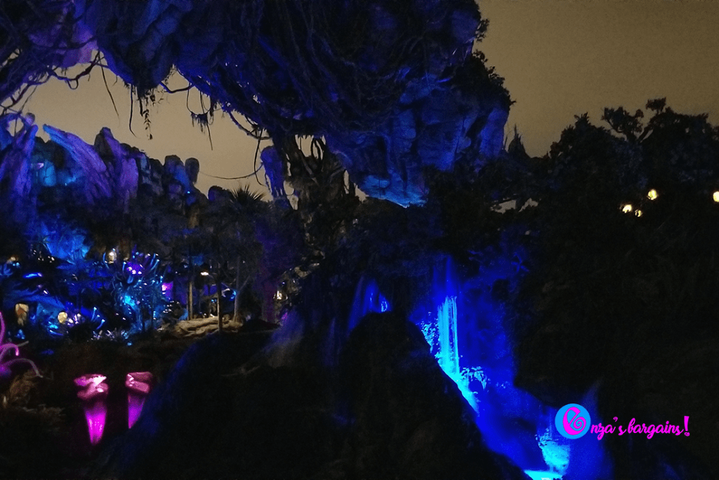 Animal Kingdom - Pandora Changes Everything