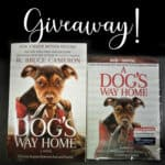 A Dog's Way Home Review & DVD/Book Giveaway