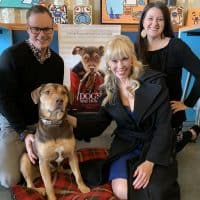 """Bella in """"A Dog's Way Home""""-Interview with W. Bruce Cameron & Cathryn Michon"""
