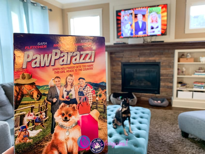 PawParazzi Review and Giveaway