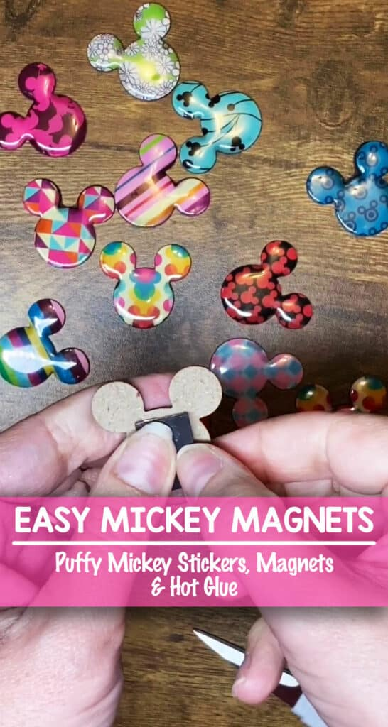 Mickey Magnet Heads - Perfect Fish Extender Gifts